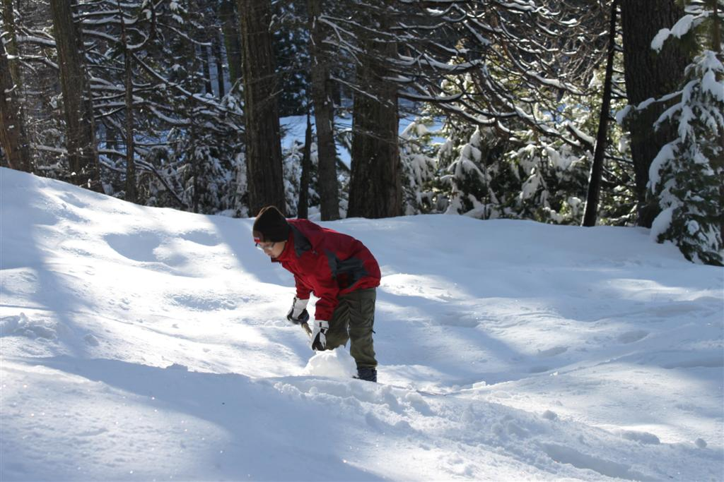 space/pictures/past_years/2011-0409-SnowCamp-Calaveras-BigTrees/IMG_8463 (Large).JPG -|- Last modified: 2011-04-11 00:18:08