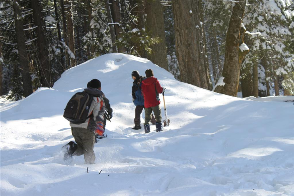 space/pictures/past_years/2011-0409-SnowCamp-Calaveras-BigTrees/IMG_8472 (Large).JPG -|- Last modified: 2011-04-11 00:18:46
