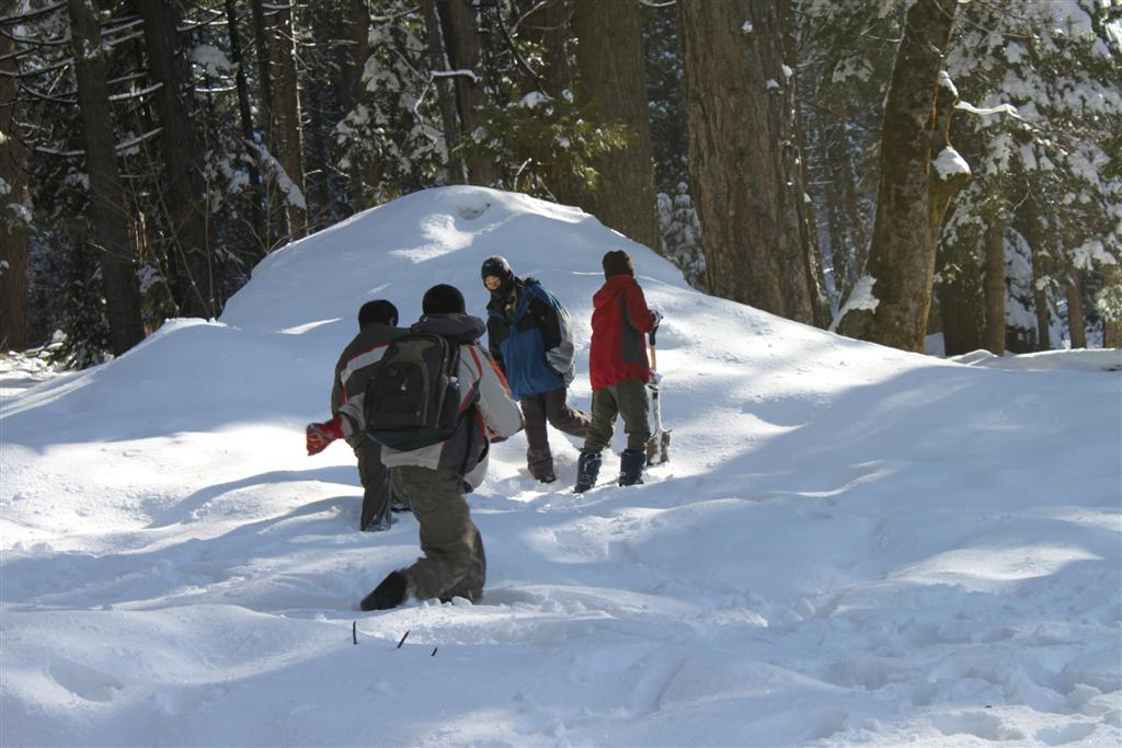 space/pictures/past_years/2011-0409-SnowCamp-Calaveras-BigTrees/IMG_8473 (Large).JPG -|- Last modified: 2011-04-11 00:18:49
