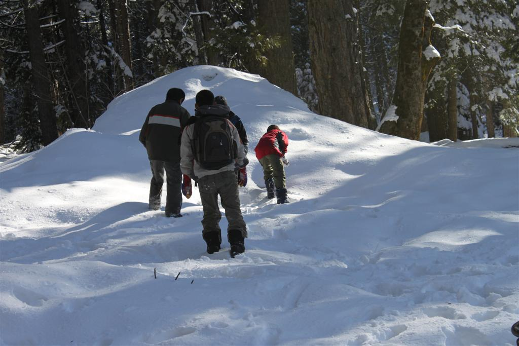 space/pictures/past_years/2011-0409-SnowCamp-Calaveras-BigTrees/IMG_8475 (Large).JPG -|- Last modified: 2011-04-11 00:18:55